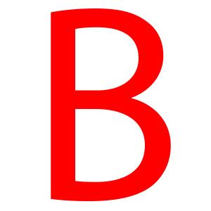 Blodgrupp B