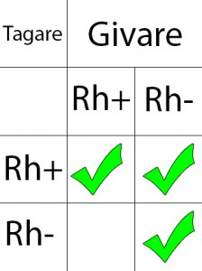 RH systemet, negativt och positivt blod